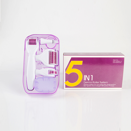 The Latest 5 IN 1 Derma Roller Kit Microneedle Therapy For Skin Care